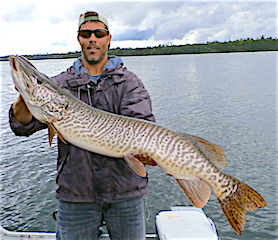 GIANT Trophy Tiger Muskie Fishing at Fireside Lodge by Scott Kimball